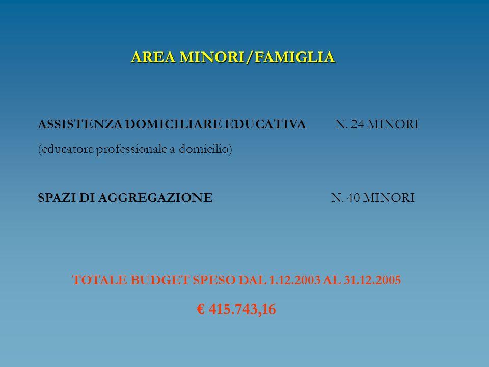 AREA MINORI/FAMIGLIA ASSISTENZA DOMICILIARE EDUCATIVA N. 24 MINORI (educatore professionale a domicilio) SPAZI DI AGGREGAZIONE N. 40 MINORI TOTALE BUD