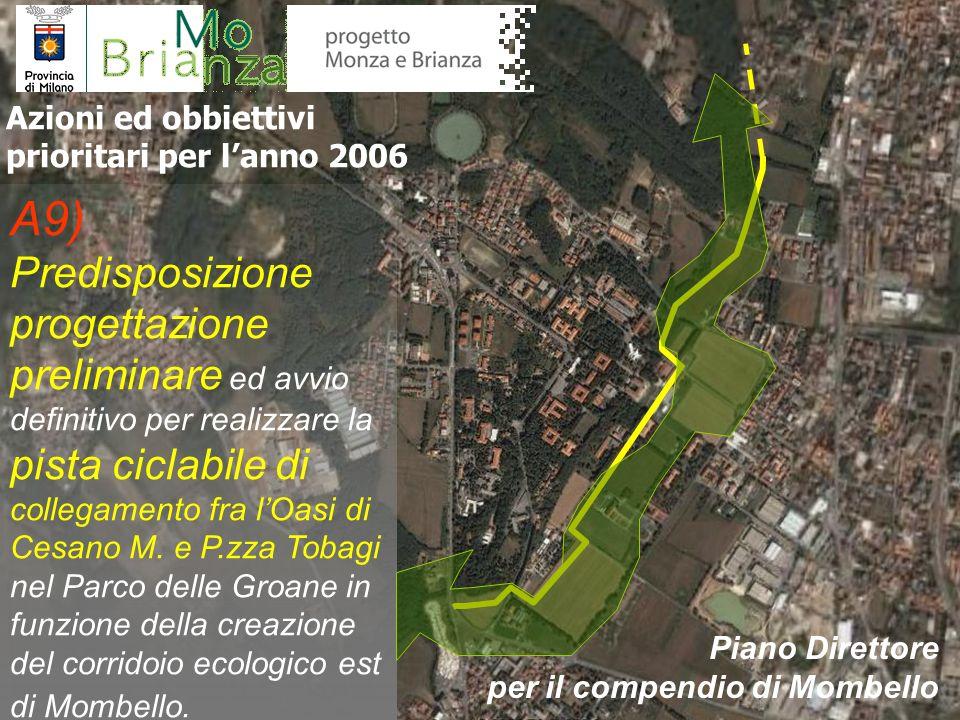 A10) Prima sistemazione e recupero delle aree a giardino e bosco riconsegnate alla Provincia e acquisite dallAzienda Ospedaliera Salvini, con ripristino essenze originali e pulizia sottobosco Azioni ed obbiettivi prioritari per lanno 2006 Piano Direttore per il compendio di Mombello