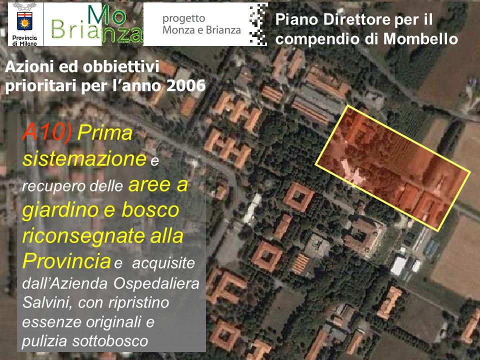 A10) Prima sistemazione e recupero delle aree a giardino e bosco riconsegnate alla Provincia e acquisite dallAzienda Ospedaliera Salvini, con ripristi
