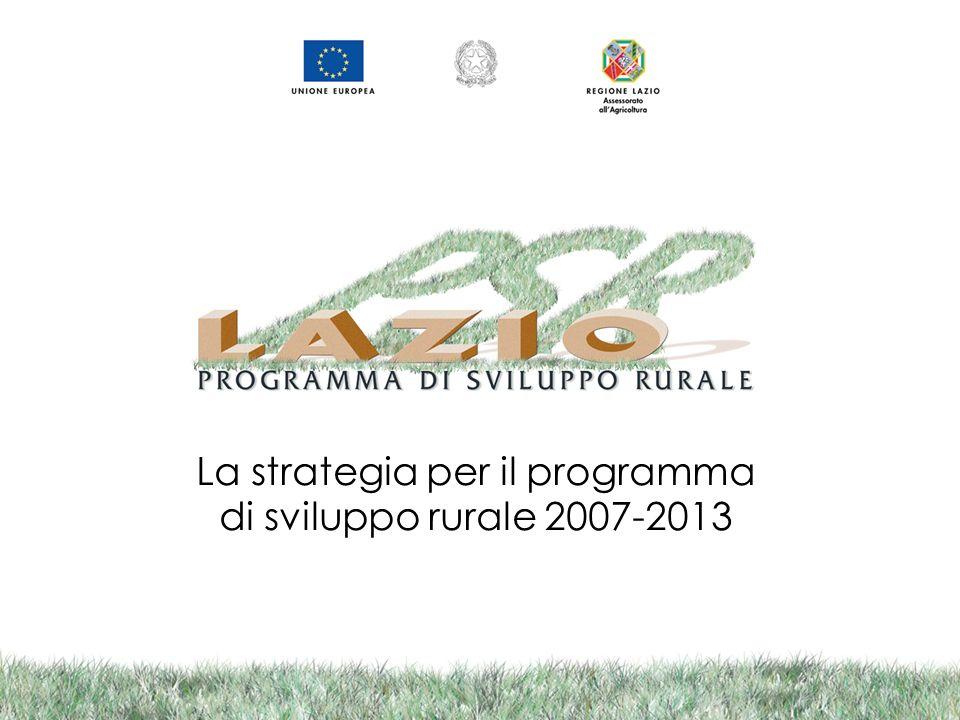 La strategia per il programma di sviluppo rurale 2007-2013