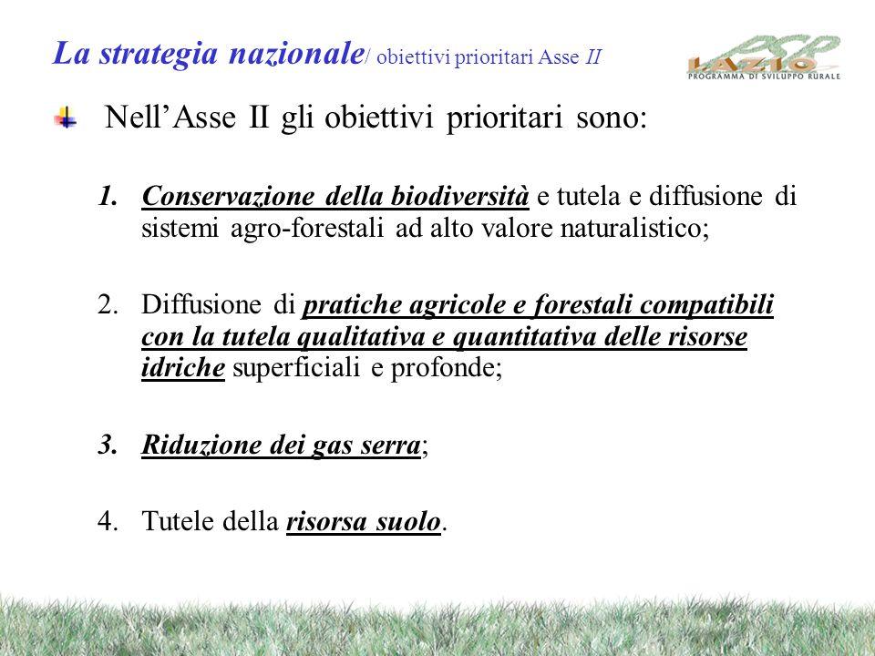 La strategia nazionale / obiettivi prioritari Asse II NellAsse II gli obiettivi prioritari sono: 1.Conservazione della biodiversità e tutela e diffusi