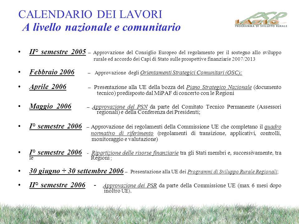 CALENDARIO DEI LAVORI A livello nazionale e comunitario II° semestre 2005 – Approvazione del Consiglio Europeo del regolamento per il sostegno allo sv