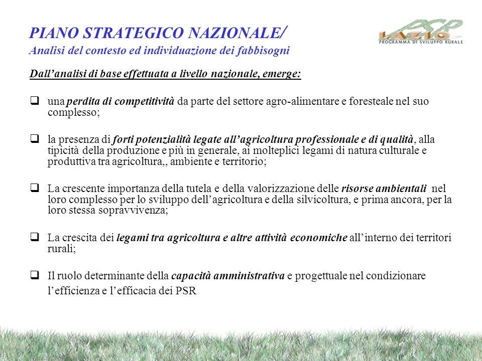 Limpianto strategico generale / la filosofia di base Centralità delle aree rurali, divenute strategiche per il raggiungimento di percorsi di sviluppo equilibrati e sostenibili del territorio.