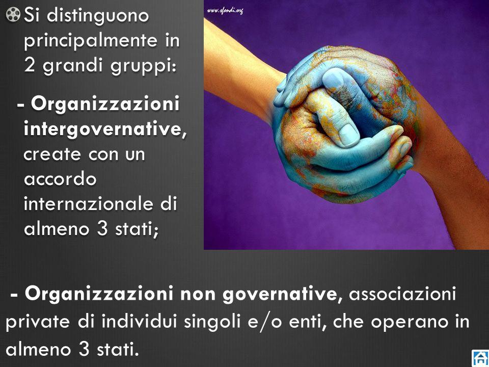 Si distinguono principalmente in 2 grandi gruppi: - Organizzazioni intergovernative, create con un accordo internazionale di almeno 3 stati; - Organiz