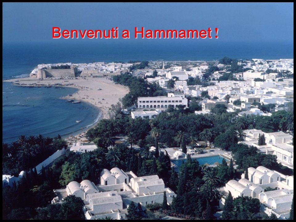 Hammamet, che in tunisino significa le colombe , incarna l immagine turistica del Paese, grazie alla presenza dei numerosi giardini che evocano piantagioni tropicali, ville celate tra aranci, cipressi e buganvillee ed incantevoli spiagge dalla sabbia fine …