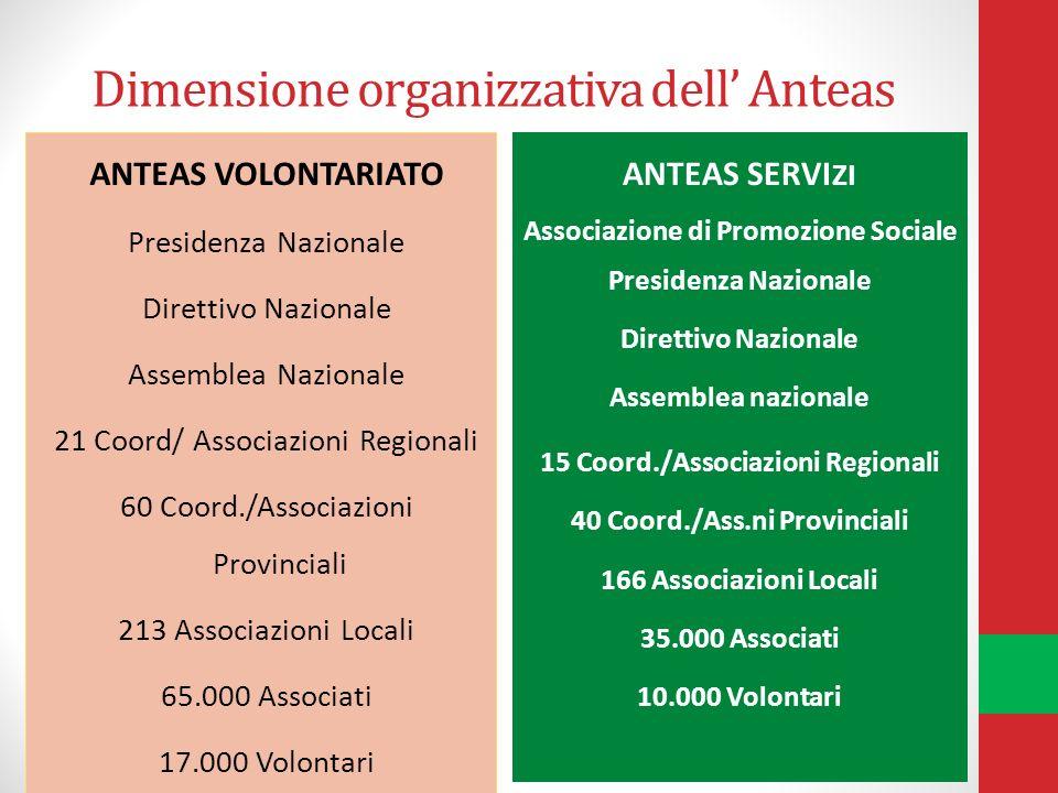 Dimensione organizzativa dell Anteas ANTEAS VOLONTARIATO Presidenza Nazionale Direttivo Nazionale Assemblea Nazionale 21 Coord/ Associazioni Regionali
