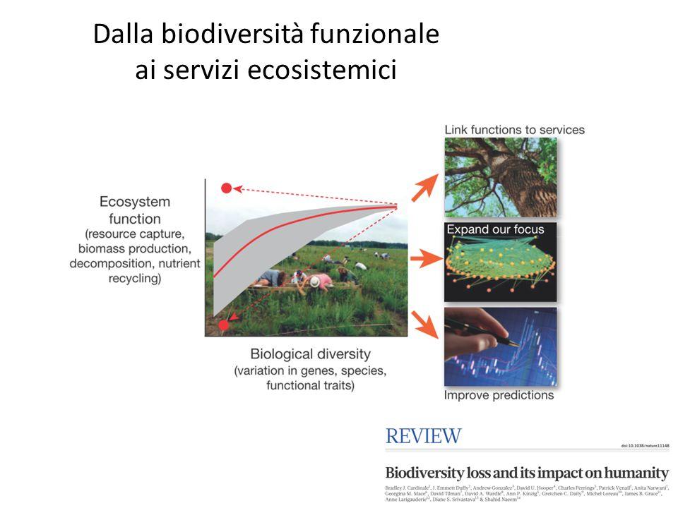 Dalla biodiversità funzionale ai servizi ecosistemici
