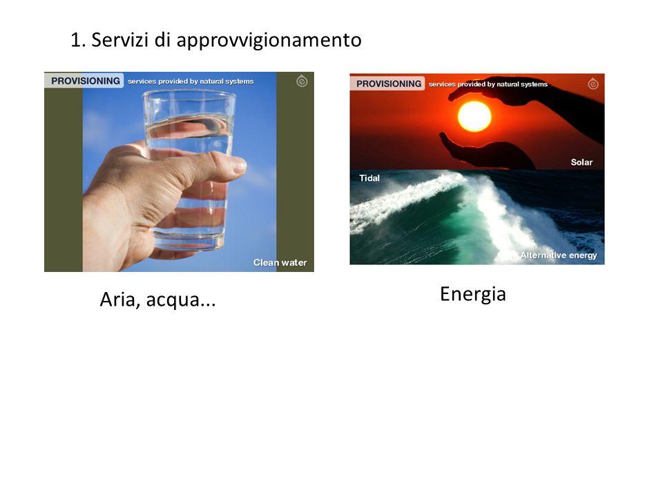 1. Servizi di approvvigionamento Aria, acqua... Energia
