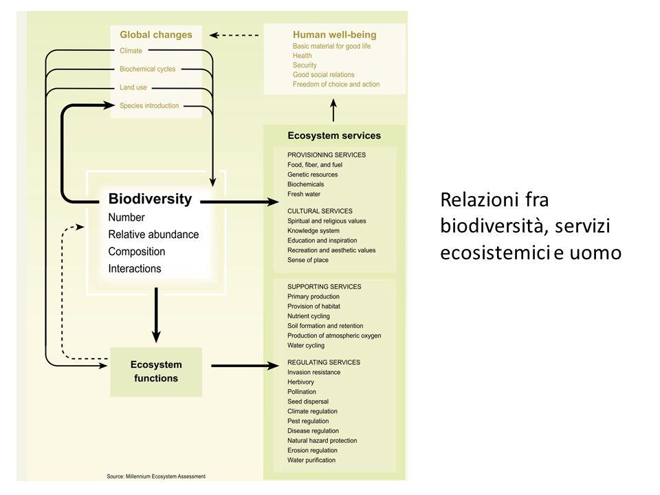 DEFINIZIONE Relazioni fra biodiversità, servizi ecosistemici e uomo