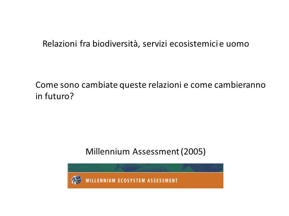 Come sono cambiate queste relazioni e come cambieranno in futuro? Millennium Assessment (2005)