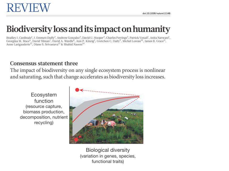 Selection effect + Complementarity effect Entrambi i meccanismi sono alla base della relazione positiva fra biodiversità e funzione