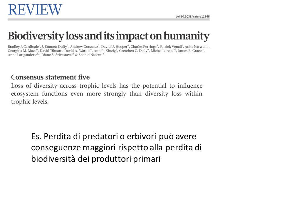Es. Perdita di predatori o erbivori può avere conseguenze maggiori rispetto alla perdita di biodiversità dei produttori primari