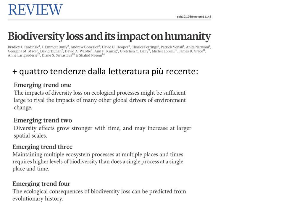 + quattro tendenze dalla letteratura più recente: