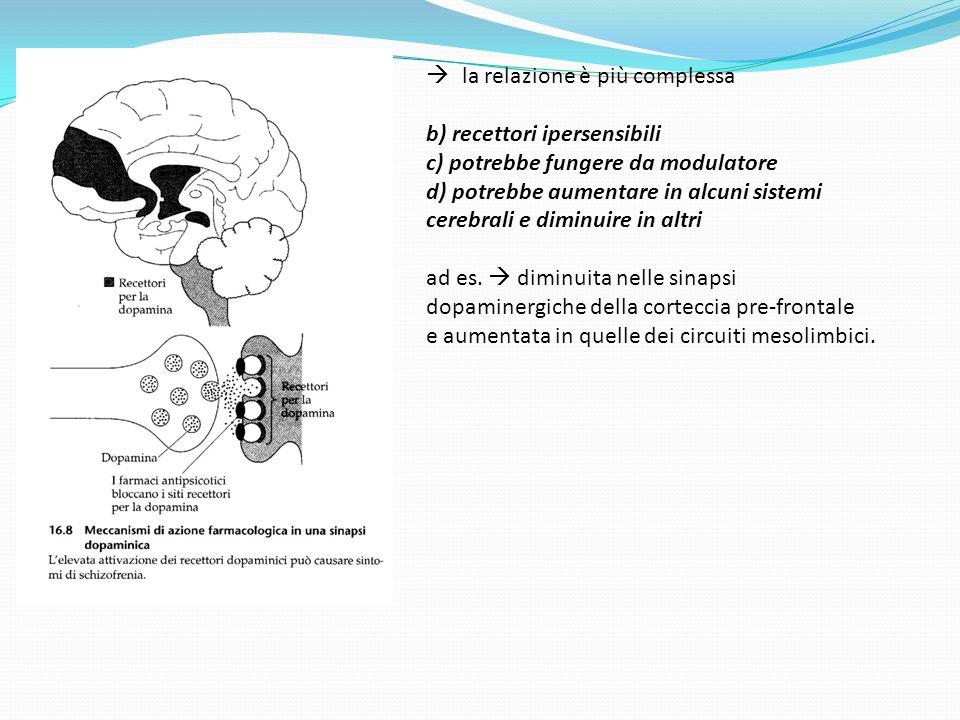 la relazione è più complessa b) recettori ipersensibili c) potrebbe fungere da modulatore d) potrebbe aumentare in alcuni sistemi cerebrali e diminuir