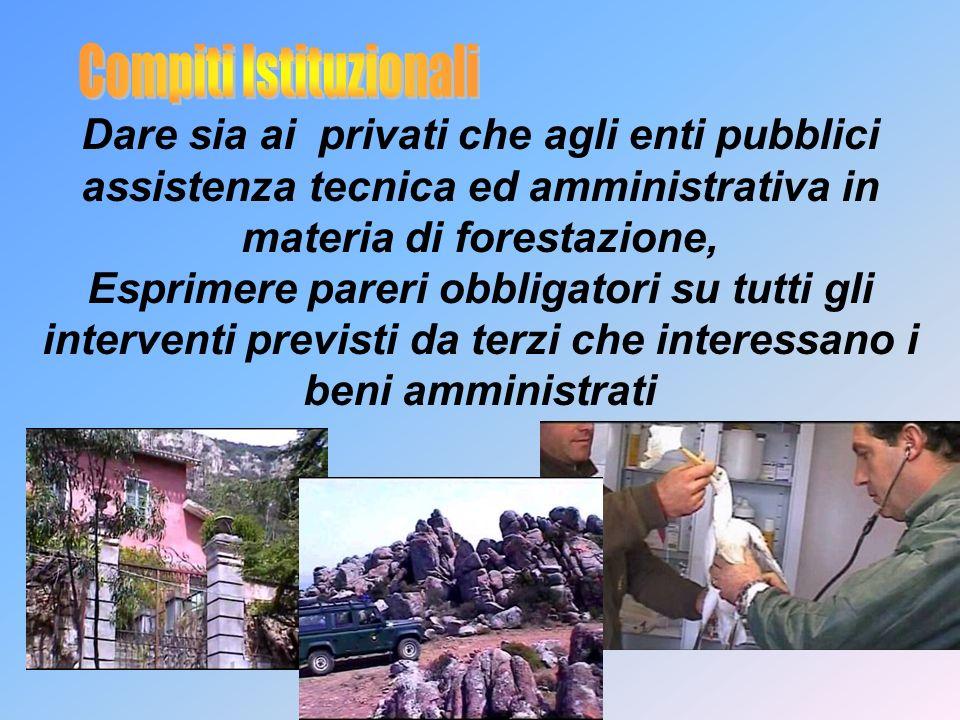 Dare sia ai privati che agli enti pubblici assistenza tecnica ed amministrativa in materia di forestazione, Esprimere pareri obbligatori su tutti gli interventi previsti da terzi che interessano i beni amministrati