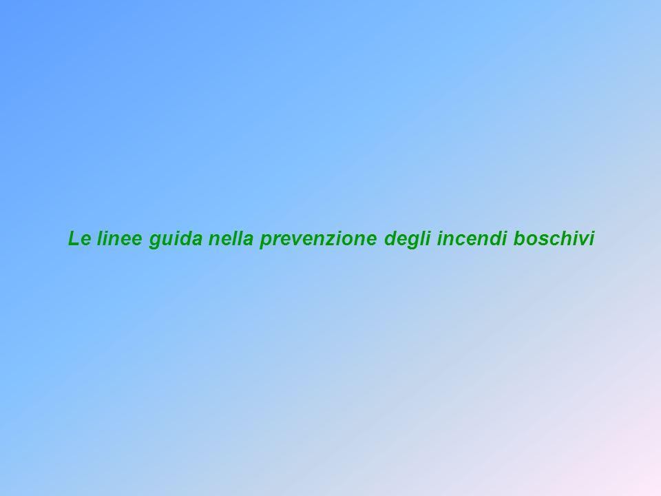 Le linee guida nella prevenzione degli incendi boschivi