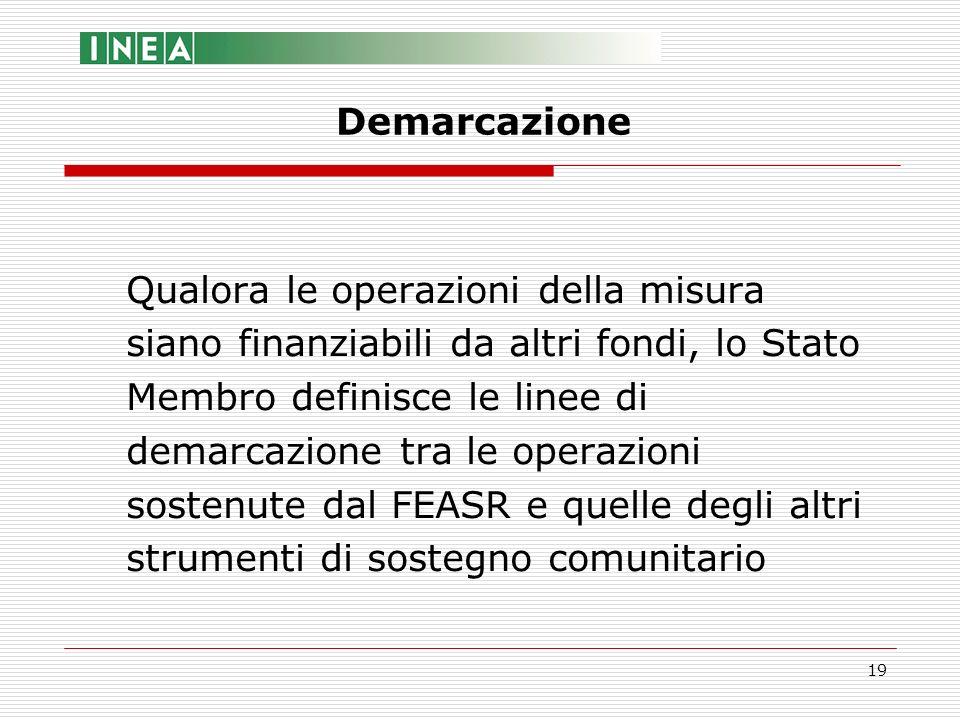 19 Qualora le operazioni della misura siano finanziabili da altri fondi, lo Stato Membro definisce le linee di demarcazione tra le operazioni sostenut