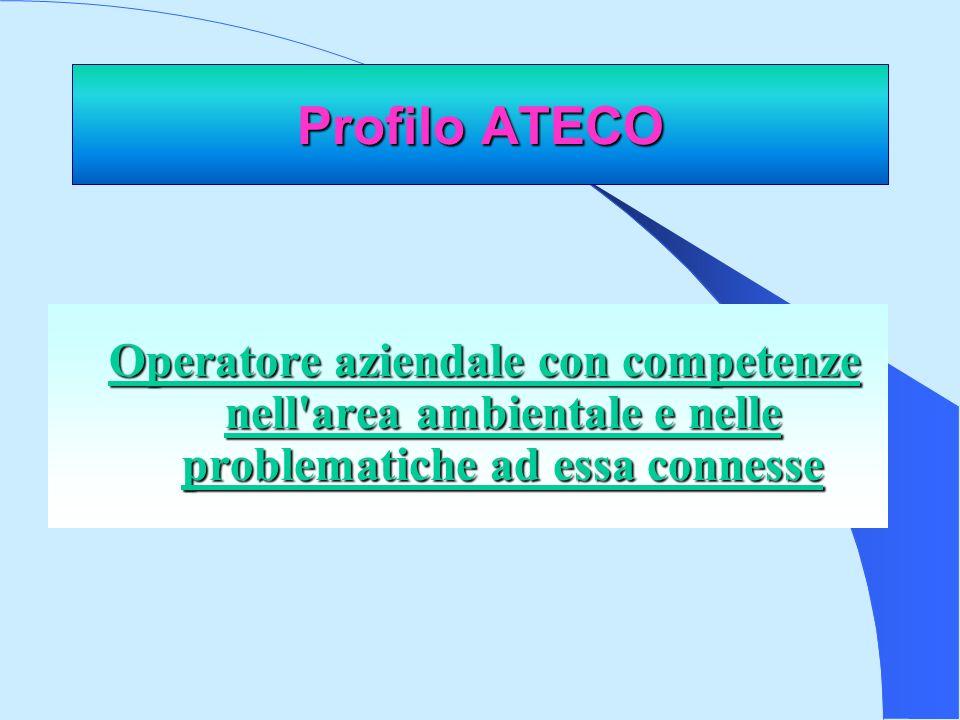 Profilo ATECO Operatore aziendale con competenze nell area ambientale e nelle problematiche ad essa connesse