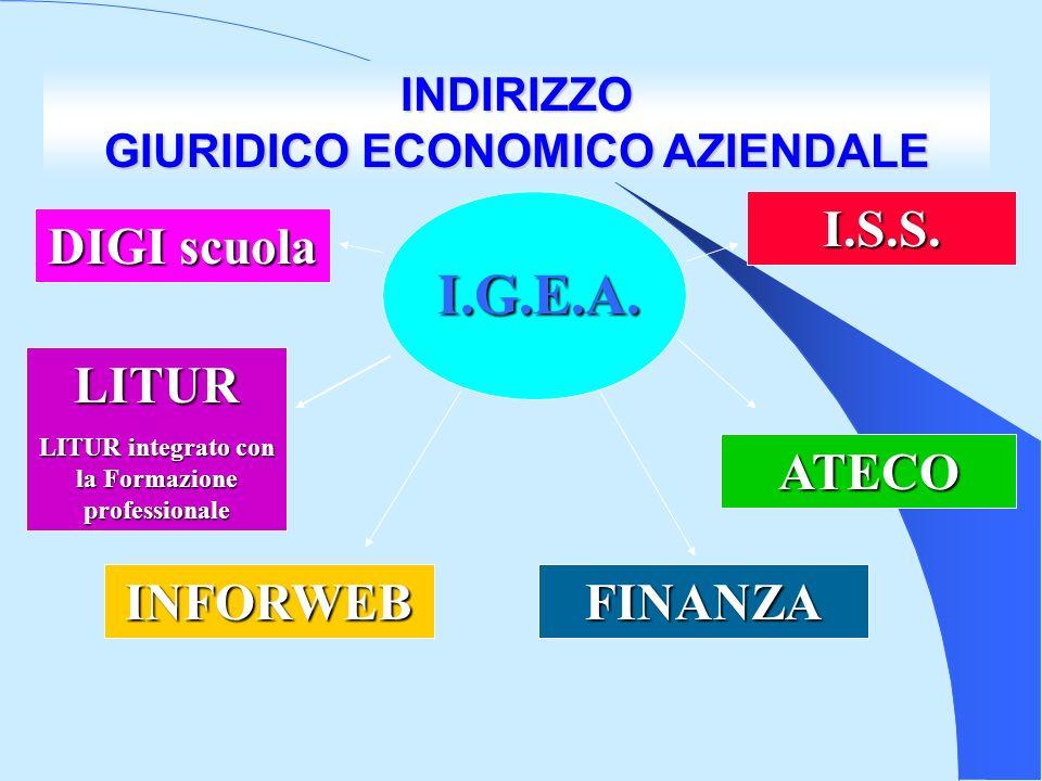 I.G.E.A.