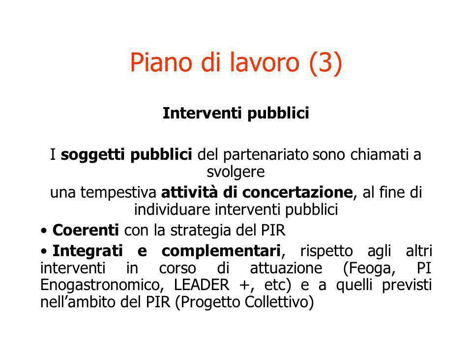 Piano di lavoro (3) Interventi pubblici I soggetti pubblici del partenariato sono chiamati a svolgere una tempestiva attività di concertazione, al fin