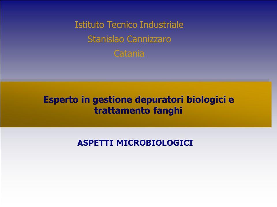Esperto in gestione depuratori biologici e trattamento fanghi ASPETTI MICROBIOLOGICI Istituto Tecnico Industriale Stanislao Cannizzaro Catania