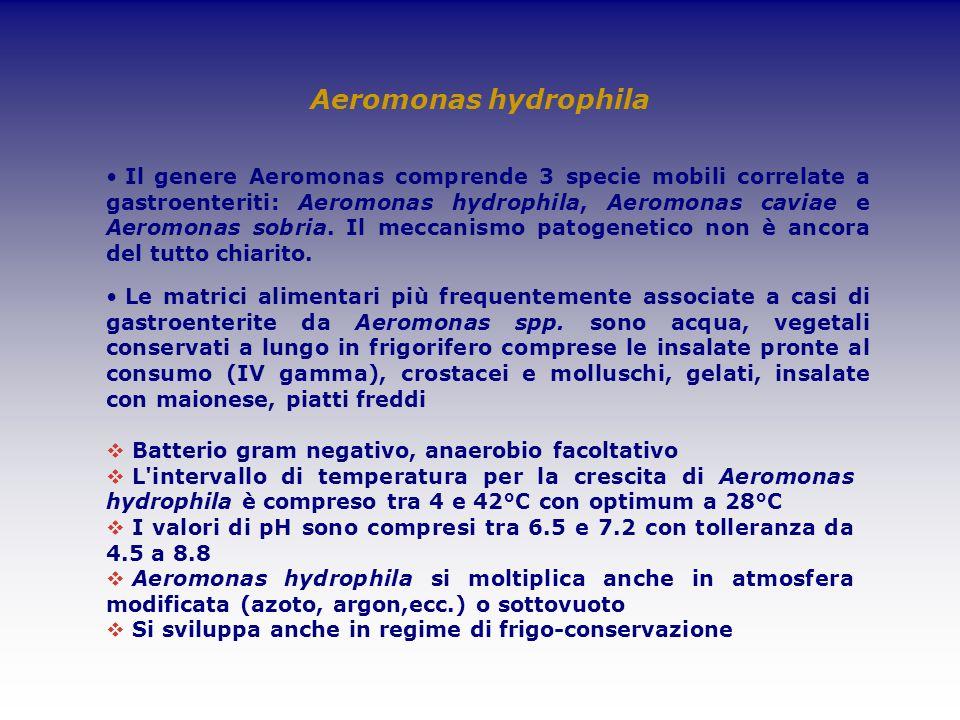Aeromonas hydrophila Batterio gram negativo, anaerobio facoltativo L'intervallo di temperatura per la crescita di Aeromonas hydrophila è compreso tra