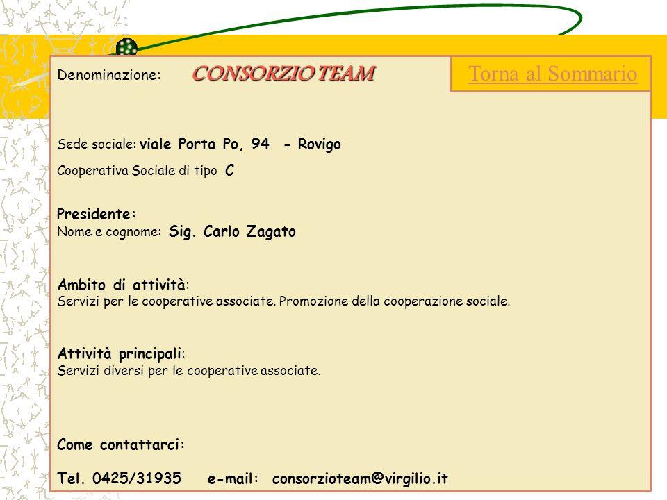CONSORZIO TEAM Denominazione: CONSORZIO TEAM Sede sociale: viale Porta Po, 94 - Rovigo Cooperativa Sociale di tipo C Presidente: Nome e cognome: Sig.