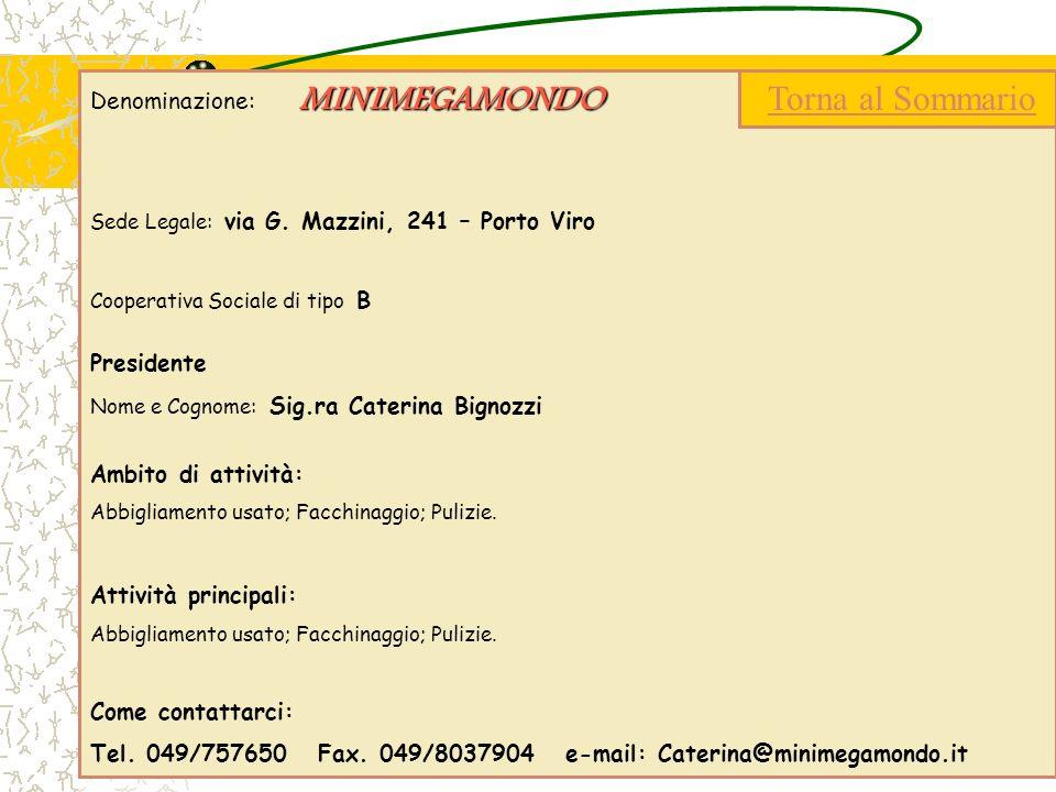 MINIMEGAMONDO Denominazione: MINIMEGAMONDO Sede Legale: via G. Mazzini, 241 – Porto Viro Cooperativa Sociale di tipo B Presidente Nome e Cognome: Sig.
