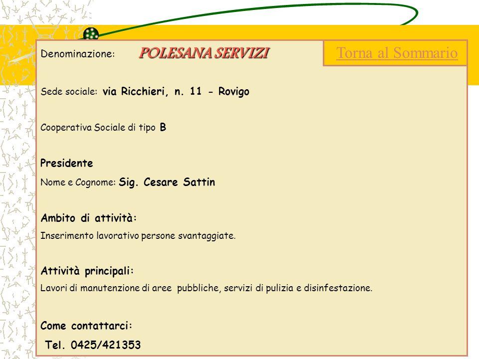 POLESANA SERVIZI Denominazione : POLESANA SERVIZI Sede sociale: via Ricchieri, n. 11 - Rovigo Cooperativa Sociale di tipo B Presidente Nome e Cognome: