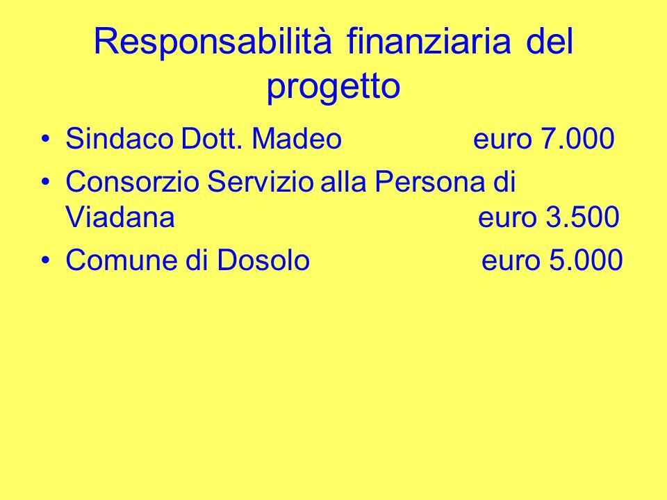 Responsabilità finanziaria del progetto Sindaco Dott. Madeo euro 7.000 Consorzio Servizio alla Persona di Viadana euro 3.500 Comune di Dosolo euro 5.0