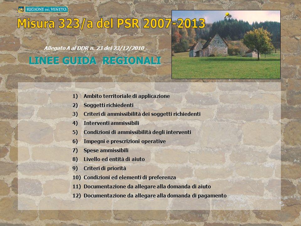 LINEE GUIDA REGIONALI Allegato A al DDR n. 23 del 23/12/2010 1)Ambito territoriale di applicazione 2)Soggetti richiedenti 3)Criteri di ammissibilità d