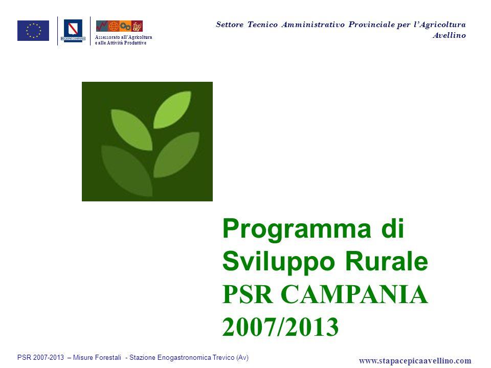 Assessorato allAgricoltura e alle Attività Produttive Programma di Sviluppo Rurale PSR CAMPANIA 2007/2013 Settore Tecnico Amministrativo Provinciale p
