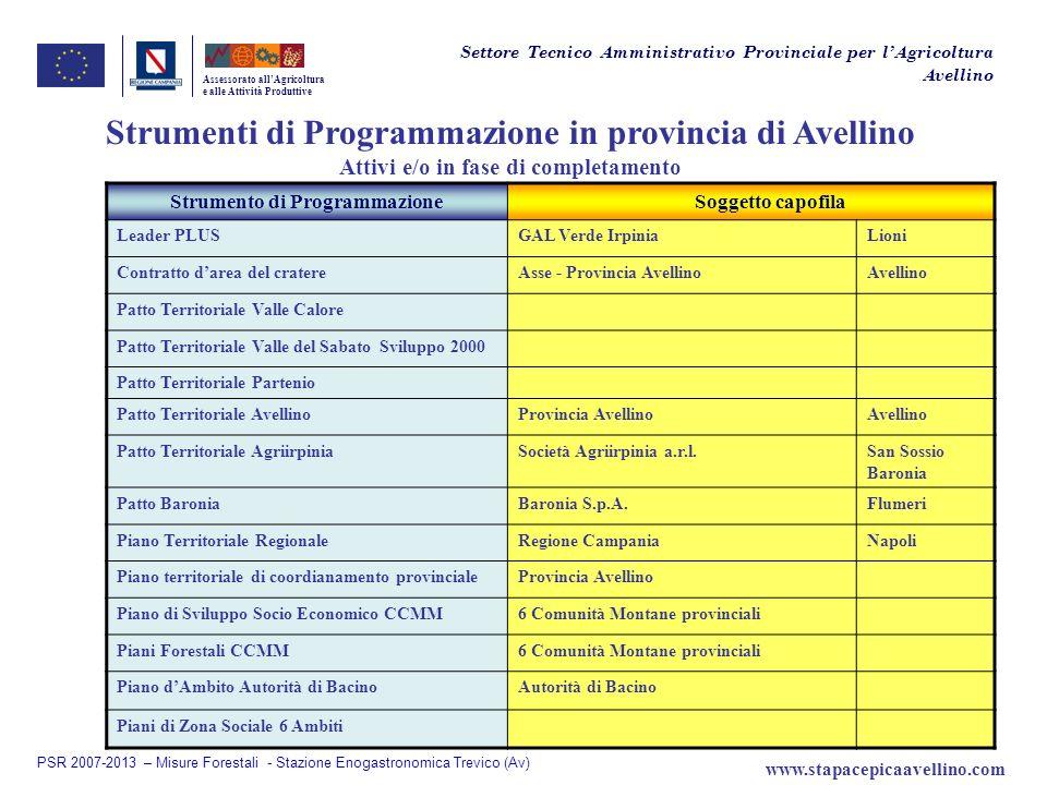 Assessorato allAgricoltura e alle Attività Produttive Strumenti di Programmazione in provincia di Avellino Attivi e/o in fase di completamento Strumen