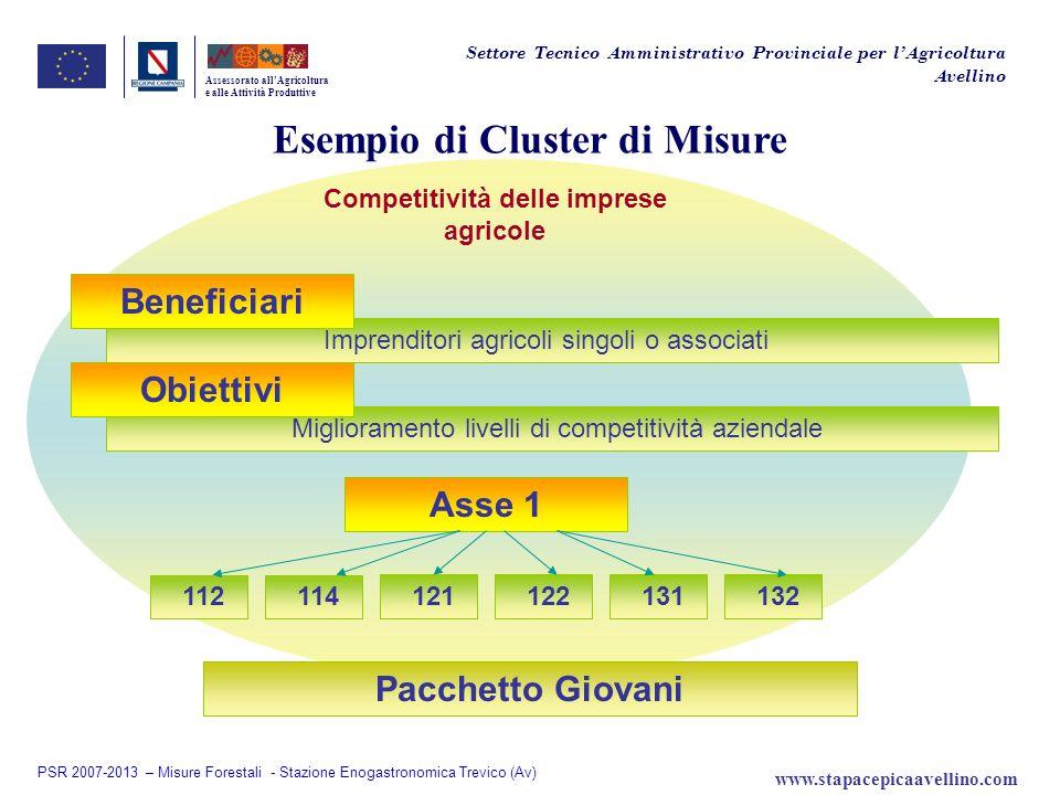 Esempio di Cluster di Misure Assessorato allAgricoltura e alle Attività Produttive Competitività delle imprese agricole Asse 1 Miglioramento livelli d