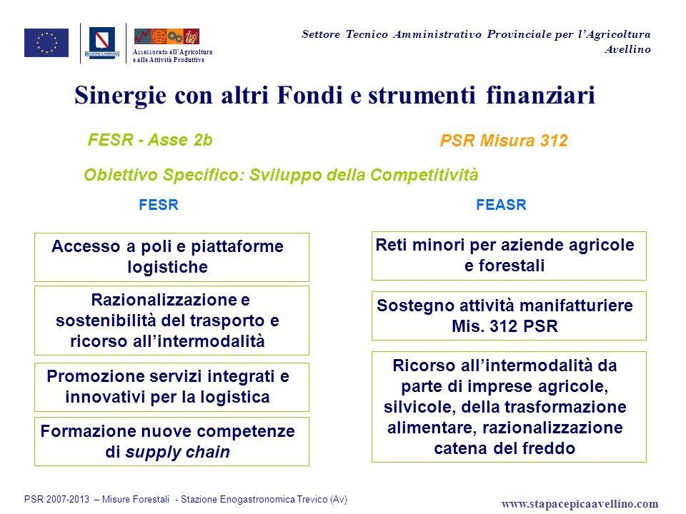 Sinergie con altri Fondi e strumenti finanziari FESR - Asse 2b Assessorato allAgricoltura e alle Attività Produttive FESRFEASR Accesso a poli e piatta