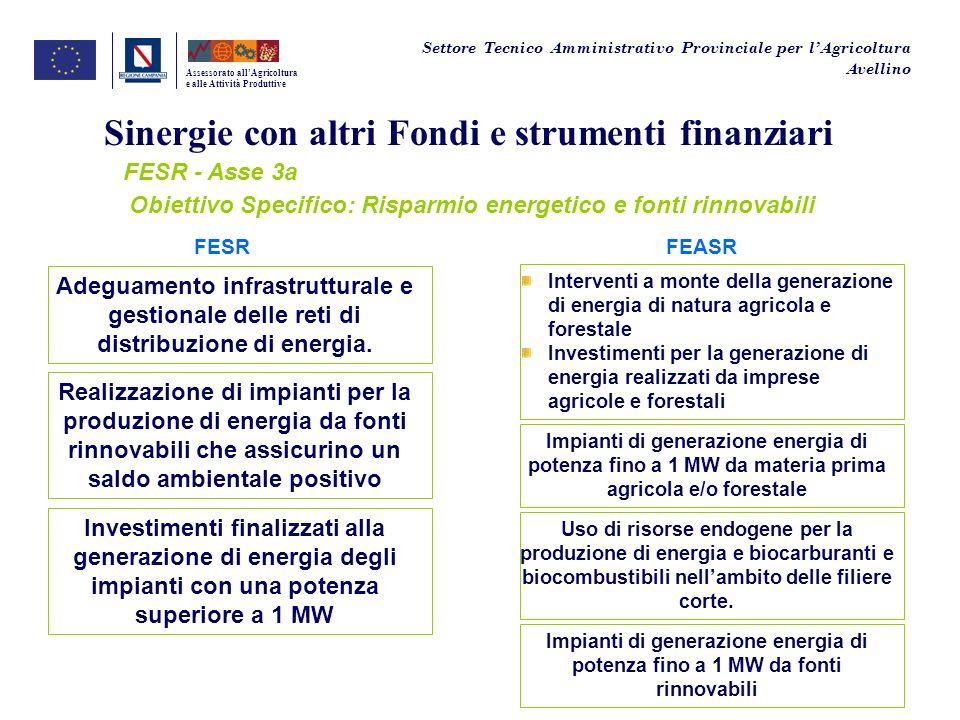 Sinergie con altri Fondi e strumenti finanziari FESR - Asse 3a Assessorato allAgricoltura e alle Attività Produttive FESRFEASR Adeguamento infrastrutt