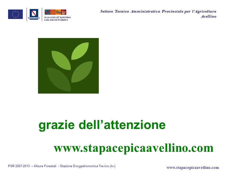 Assessorato allAgricoltura e alle Attività Produttive grazie dellattenzione Settore Tecnico Amministrativo Provinciale per lAgricoltura Avellino PSR 2