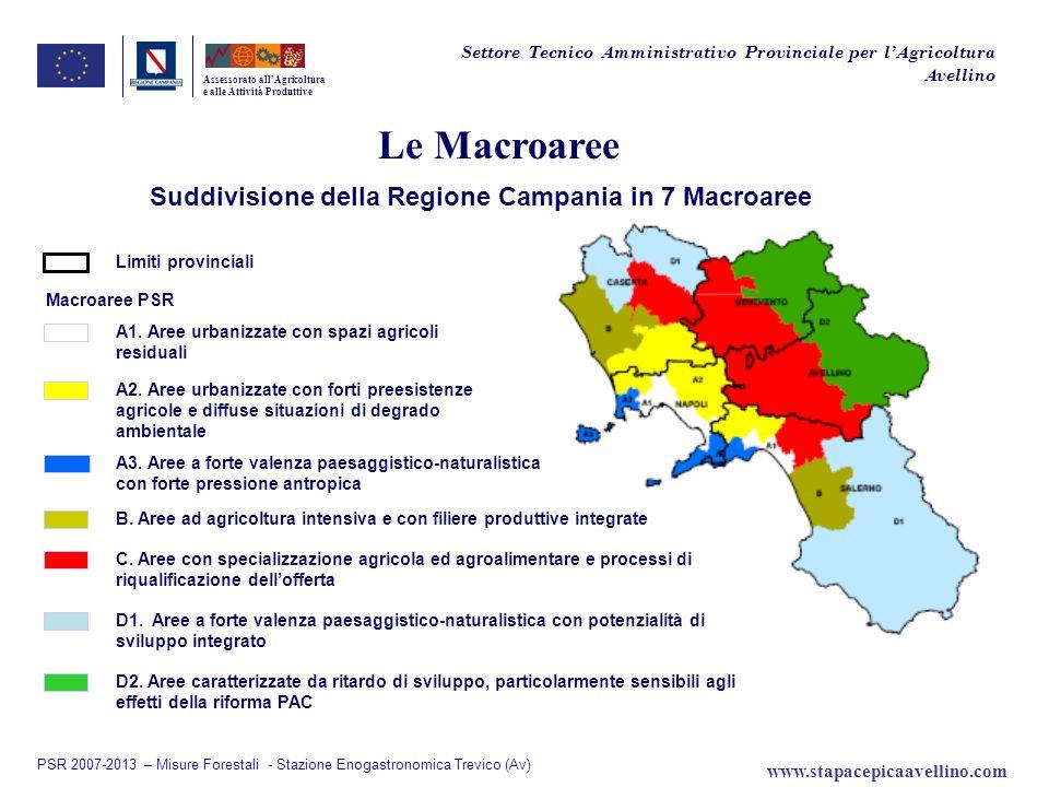 Le Macroaree Suddivisione della Regione Campania in 7 Macroaree Assessorato allAgricoltura e alle Attività Produttive Limiti provinciali Macroaree PSR