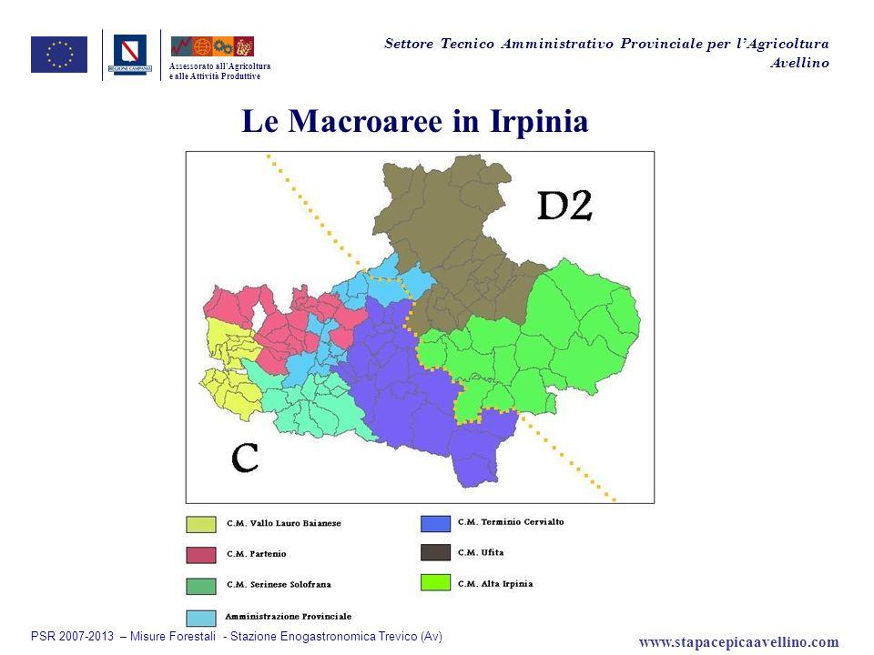 Le Macroaree in Irpinia Assessorato allAgricoltura e alle Attività Produttive Settore Tecnico Amministrativo Provinciale per lAgricoltura Avellino PSR