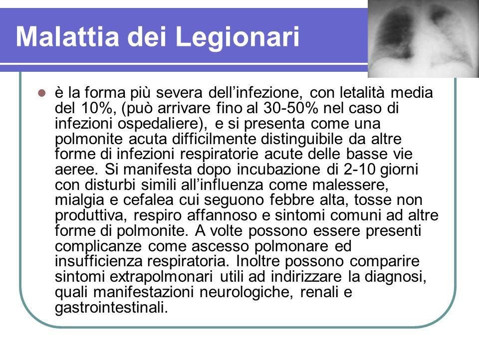 Malattia dei Legionari è la forma più severa dellinfezione, con letalità media del 10%, (può arrivare fino al 30-50% nel caso di infezioni ospedaliere