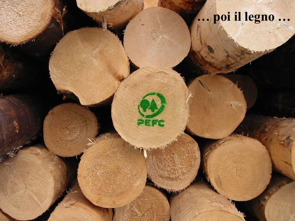 13 … poi il legno …