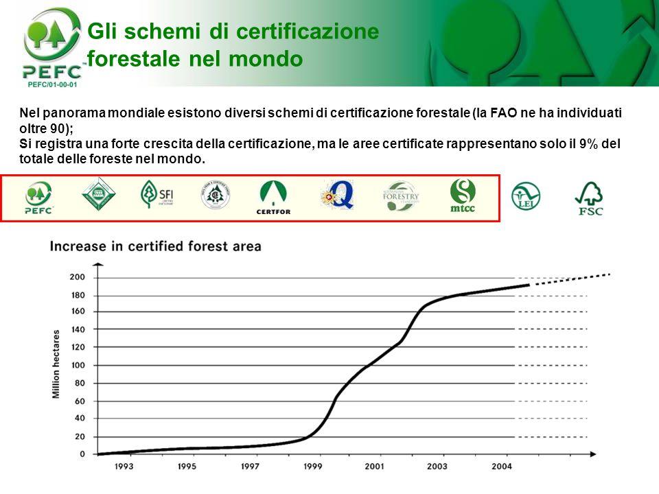 Nel panorama mondiale esistono diversi schemi di certificazione forestale (la FAO ne ha individuati oltre 90); Si registra una forte crescita della ce