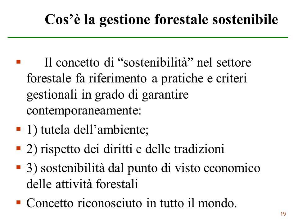 19 Cosè la gestione forestale sostenibile Il concetto di sostenibilità nel settore forestale fa riferimento a pratiche e criteri gestionali in grado d