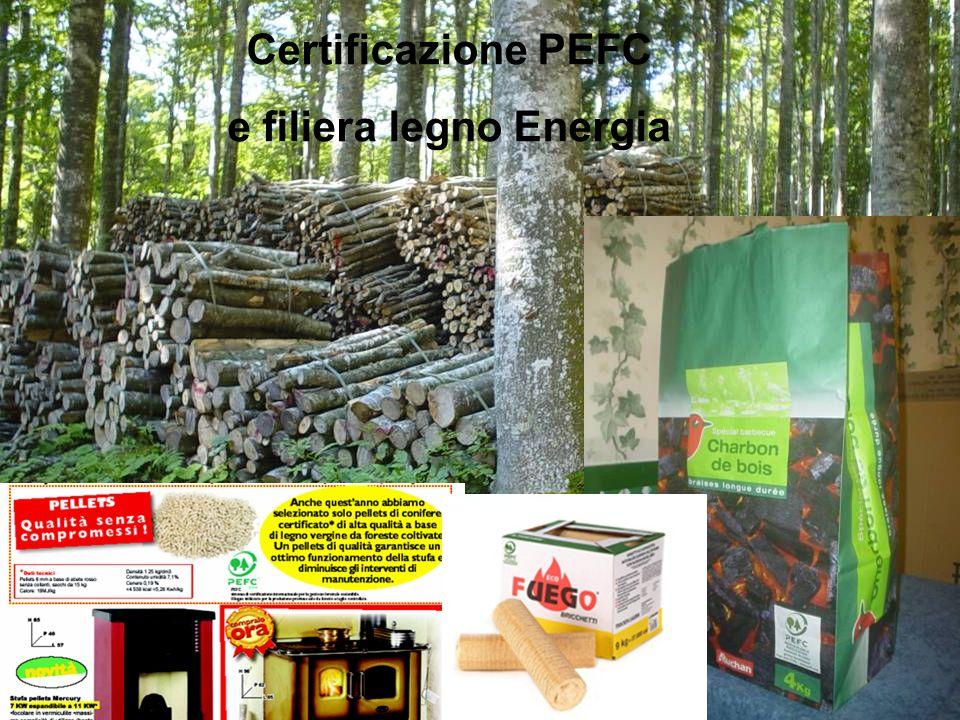 28 Certificazione PEFC e filiera legno Energia