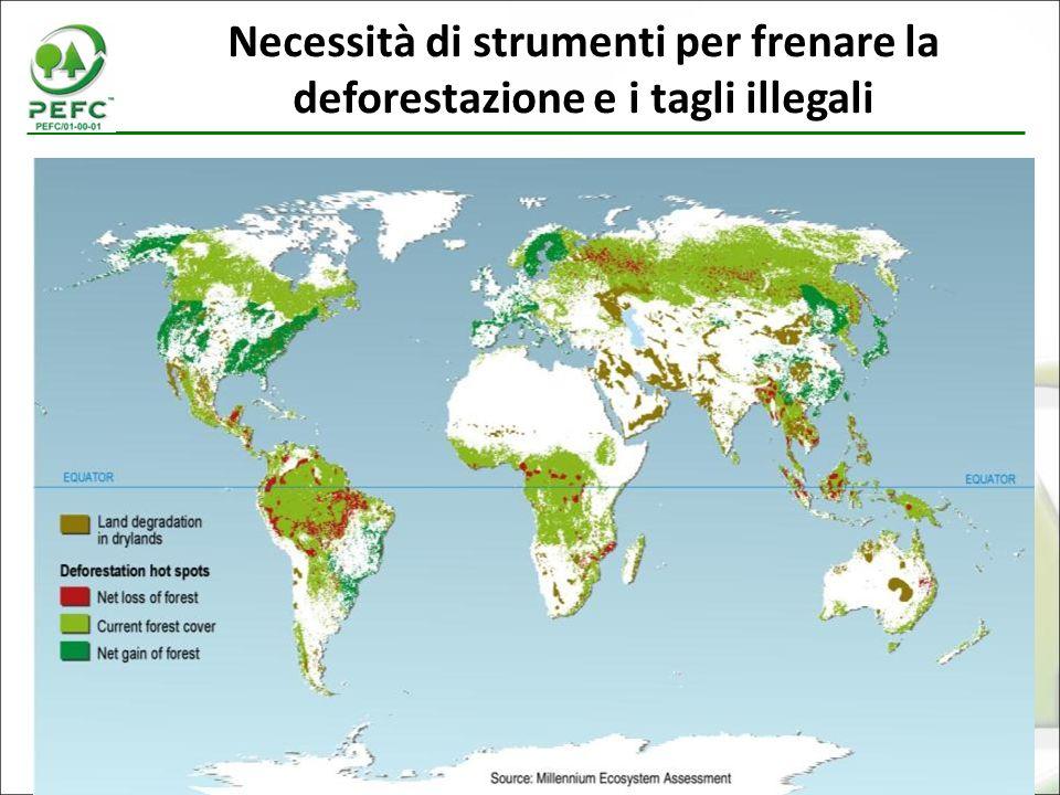 7 Necessità di strumenti per frenare la deforestazione e i tagli illegali