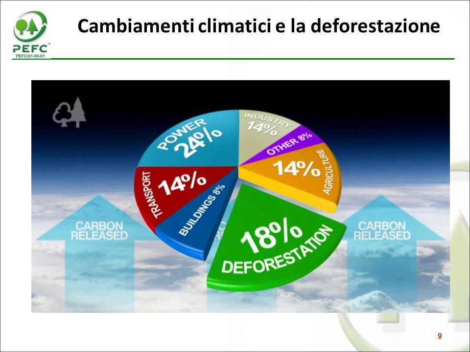 9 Cambiamenti climatici e la deforestazione