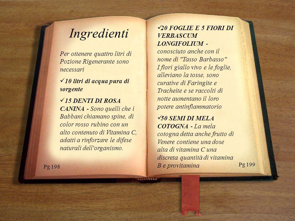 Pg 221 Pg 220 Copiare qui il testo con font times new roman dimensione 16 in corsivo