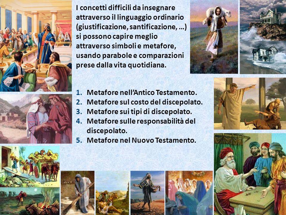 1.Metafore nellAntico Testamento. 2.Metafore sul costo del discepolato. 3.Metafore sui tipi di discepolato. 4.Metafore sulle responsabilità del discep