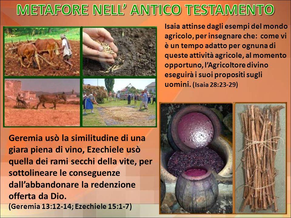 Isaia attinse dagli esempi del mondo agricolo, per insegnare che: come vi è un tempo adatto per ognuna di queste attività agricole, al momento opportu