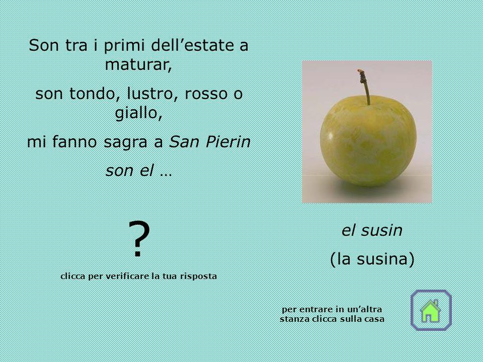 Son tra i primi dellestate a maturar, son tondo, lustro, rosso o giallo, mi fanno sagra a San Pierin son el … .